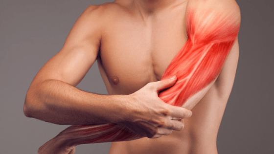 Photo of طرق للتعامل مع الم في عضلة البايسبس